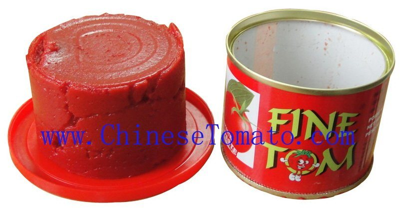 Canned Food, Canned Tomao Paste, Canned Vegetables