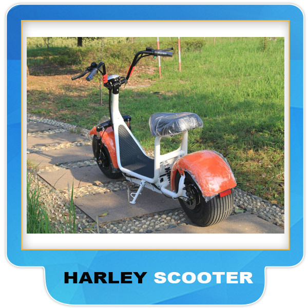 Electric Scooter Harley 2017 1000/1500W 12ah 20ah Seev City Coco