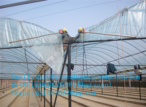 Factory Directly Selling Cheapest Film Greenhouse / Venlo Greenhouse