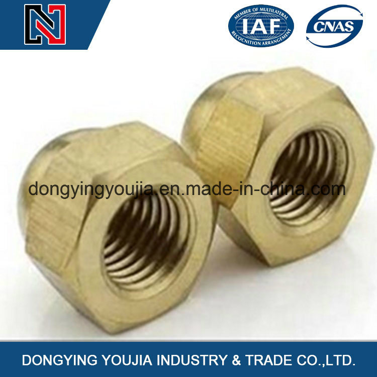 M3-M24 Stainless Steel Hexagon Acorn Nuts Made in China