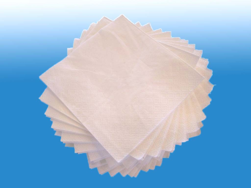 Paper Napkin Folding Machine (Beverage napkin) (Low fold napkin) (Lunch napkin)