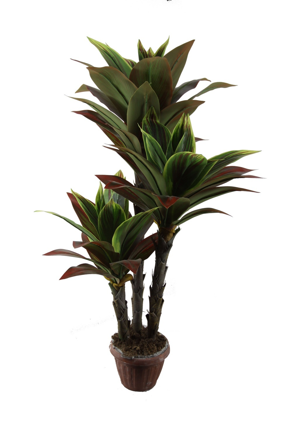 China high quality dracaena plant artificial plant jtla for Plante dracaena