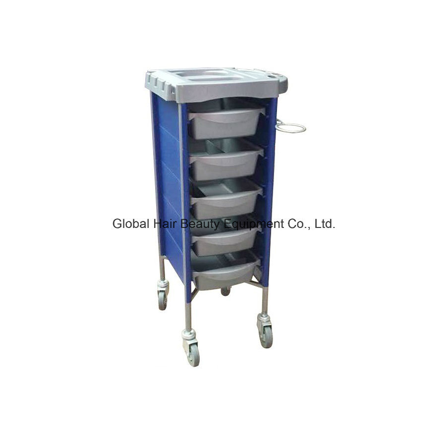 Hairdressing Trolley for Beauty & Hair Salon (HQ-A032)