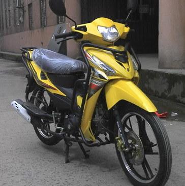 Wolf Motorycle (KS110-9)