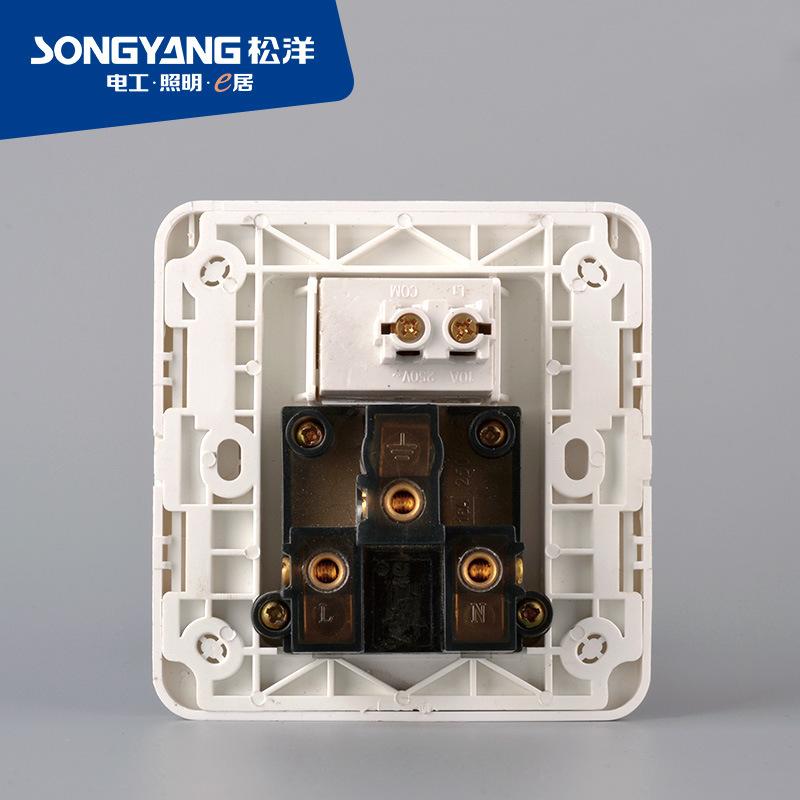 a Series Power Plug 15A Socket