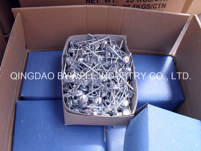 Roofing Nails Galvanized Zinc with Twisted or Smooth Shank (8G-13G)