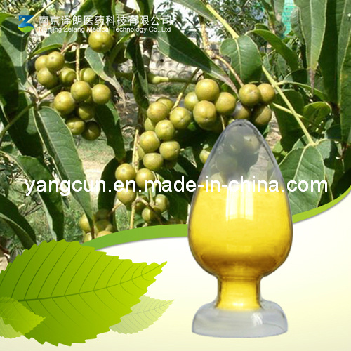 CAS: 633-65-8 High Purity Berberine Hydrochloride/Berberine HCl