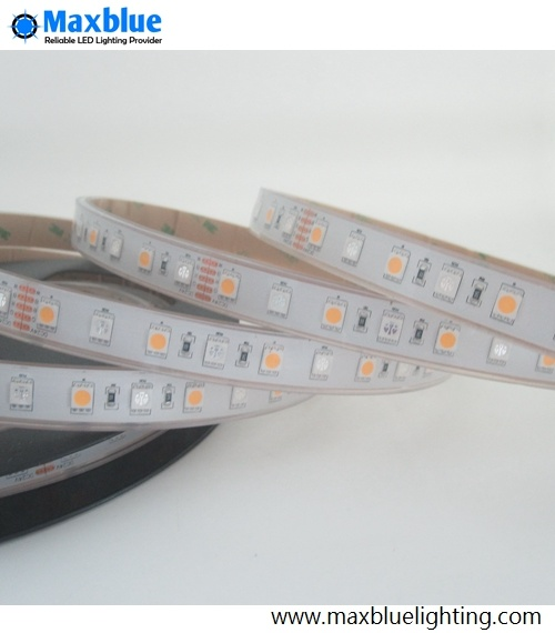 RGB LED Strip/LED Strip Light/Flexible LED Strip