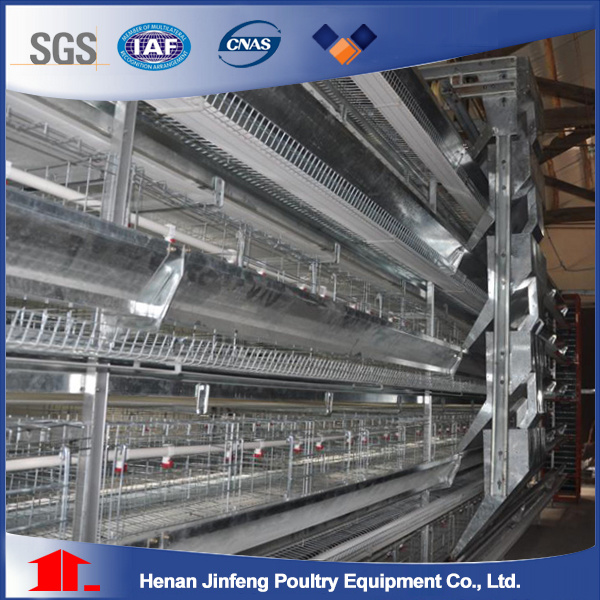 Jaulas Gallinas Ponedoras Tipo H Y Tipo a/Battery Hen Cages (BDT028-JF-28)