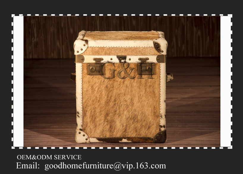 Custom Storage Boxes for Trunk with High Quality