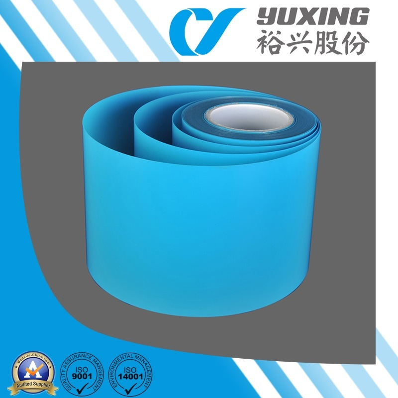 Pet Polyester Film for Heddles (CY22B)