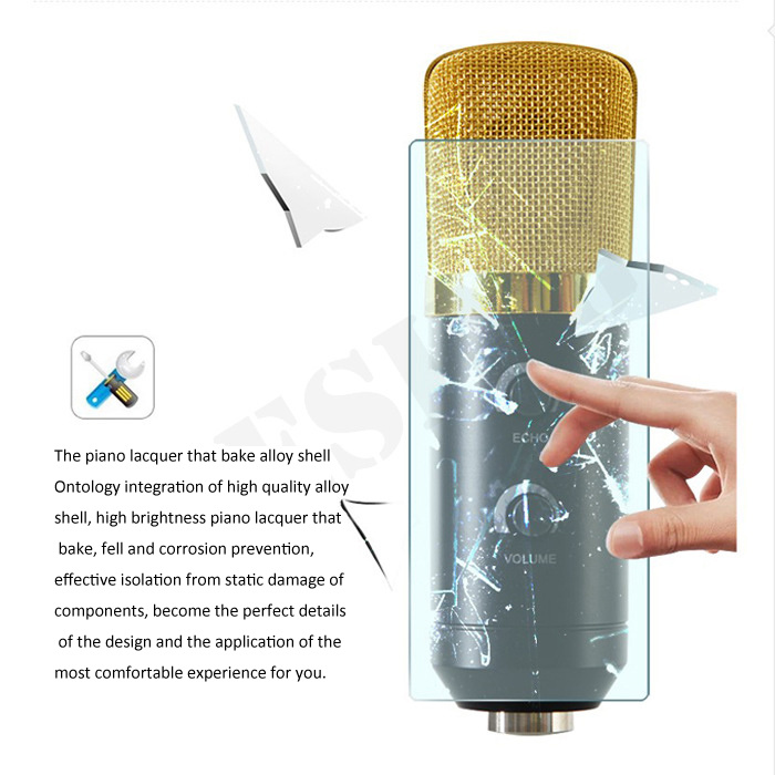 Computer Special Microphone Speaker Cable Capacitance Reverberation Microphone