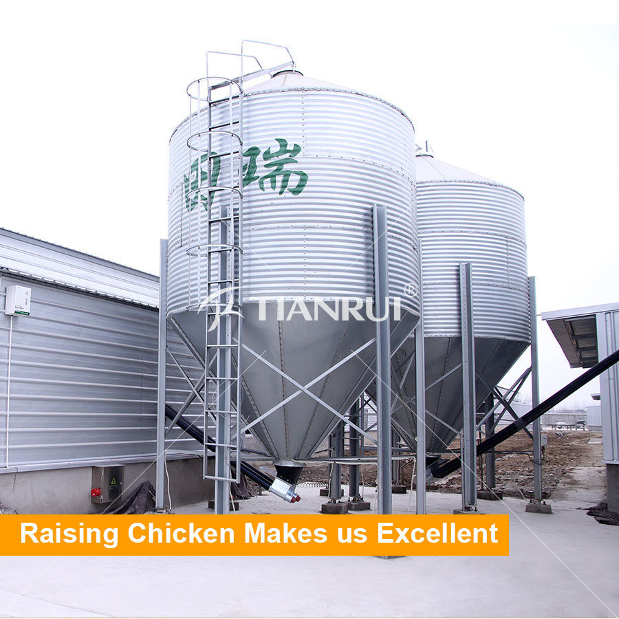 Hot Galvanized Silo for Layers, Broilers and Pullets Breeding