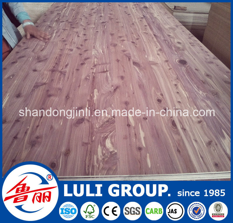 Hot Sale One Time Hot Press Cheap Plywood