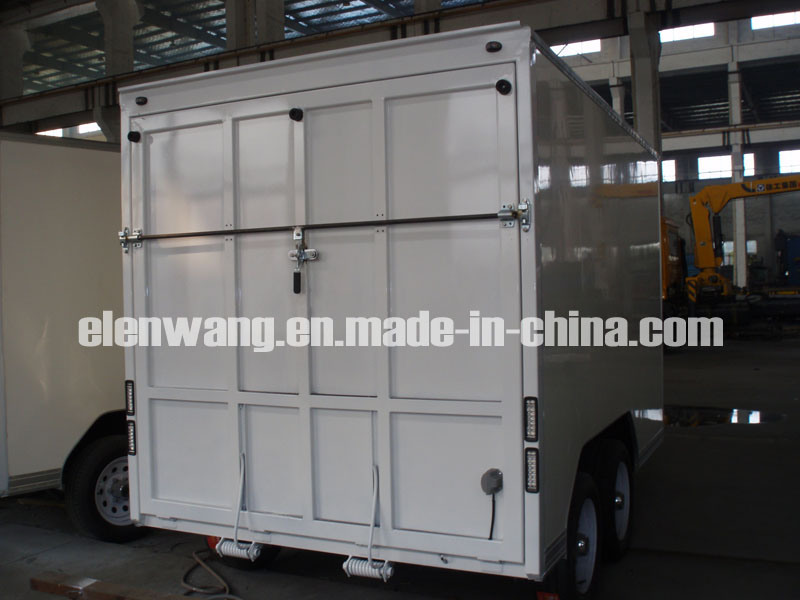 Cargo Van With Rear Ramp Door (GW-BLV14)
