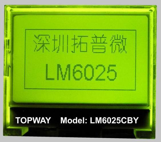 128X64 Graphic LCD Module Cog Type LCD Display (LM6025C)