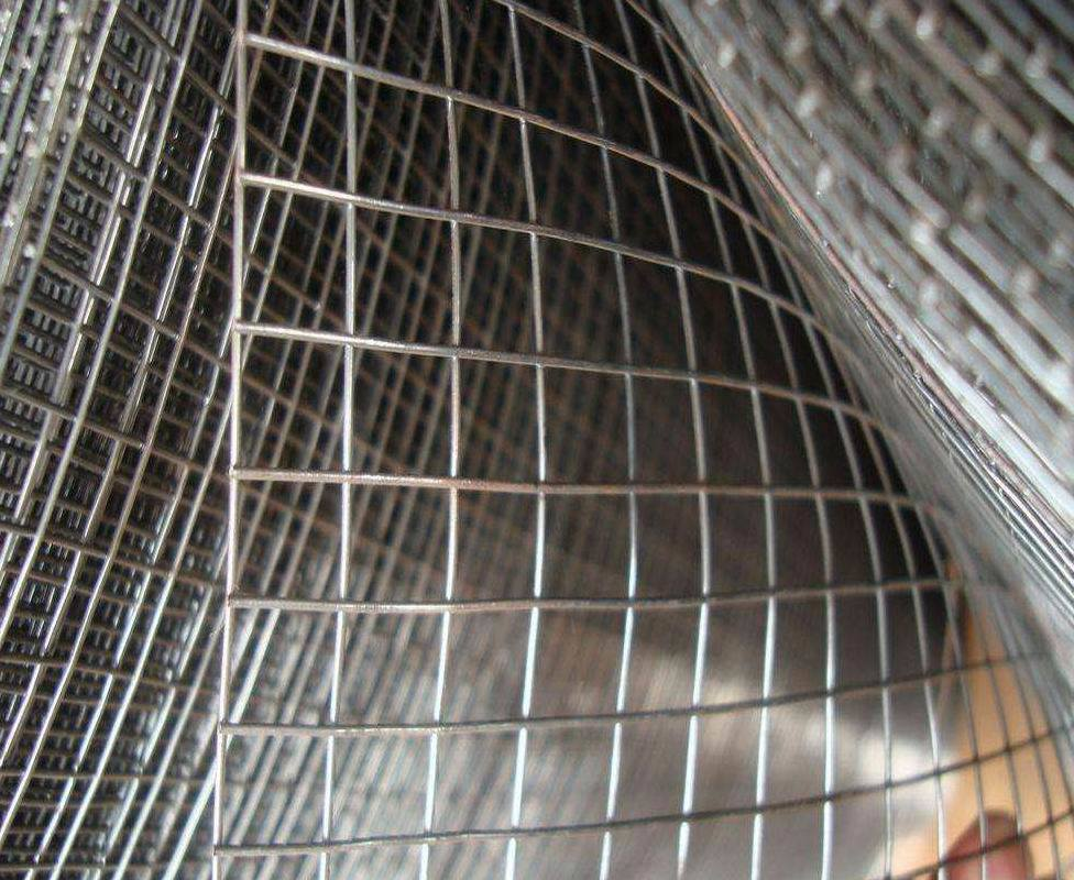 Welded Wire Mesh/Security Fence/Galvanized Welded Mesh