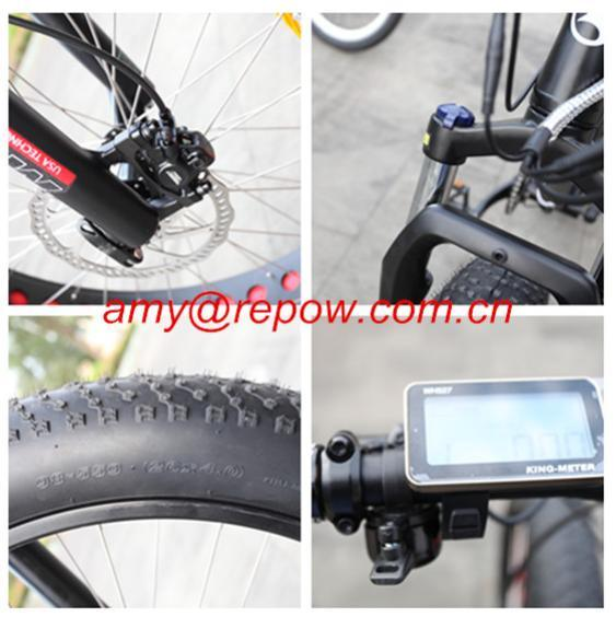 48V/11ah Al Alloy Lithium Battery Electric Bicycle 350W (BN2606)