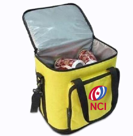 Fashion Promotional Insulated Picnic Ice Cooler Bags for Lunch