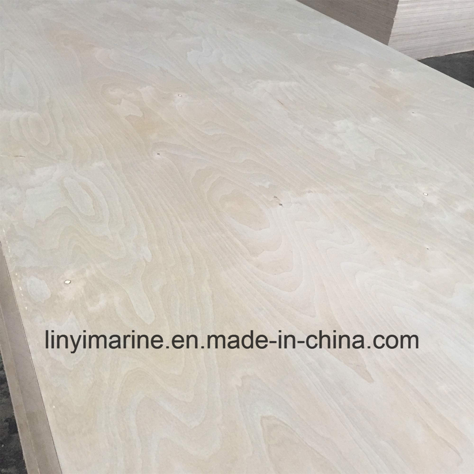Russia Birch Plywood for USA Market Carb2 Bb/Bb Grade