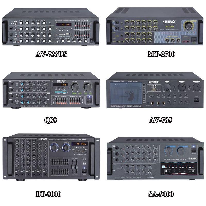 30W 2 Channel Professional Power Amplifier (AV-738USB)