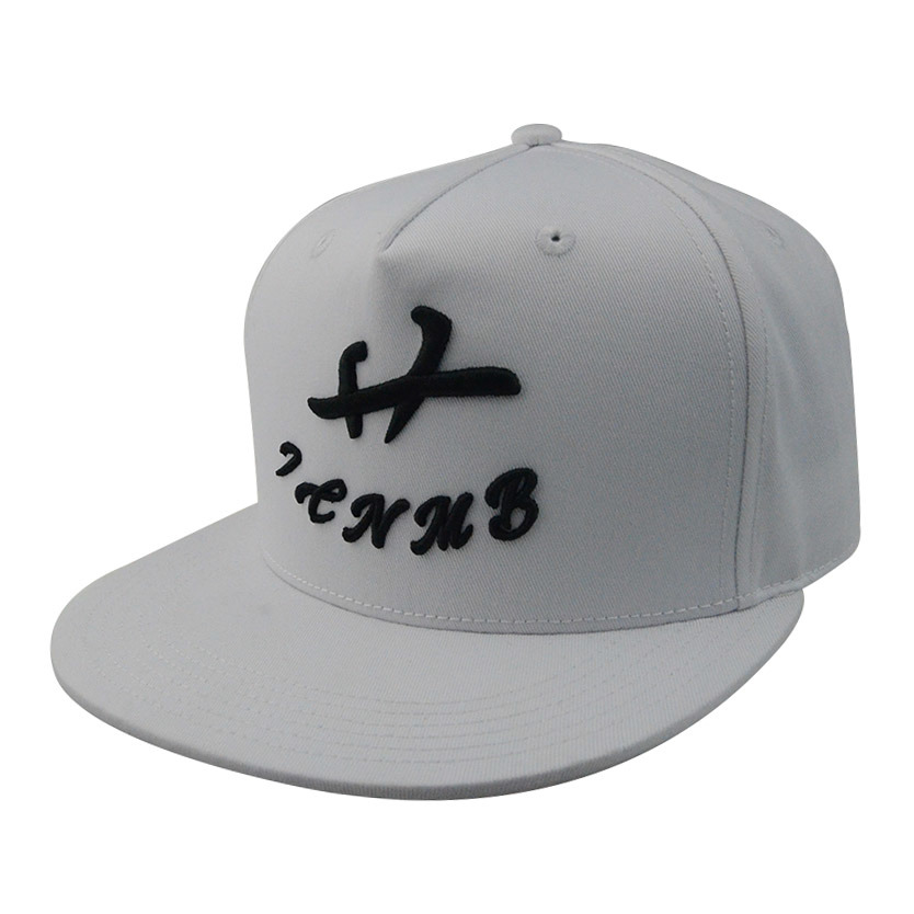 Custom Caps and Hats Cotton 3D Embroidered Snapback Cap