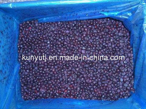 Frozen Blueberry with High Quality