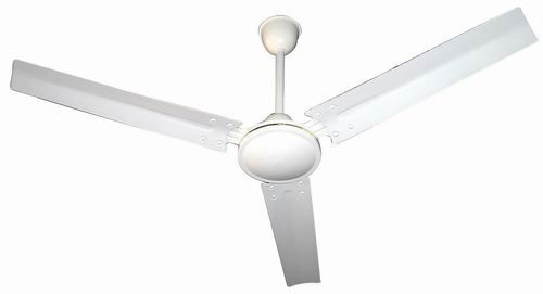 Electrical Ceiling Fans - Ceiling Fans and Mini Ceiling Fans