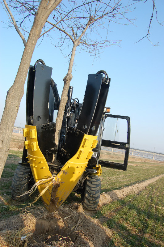 Tree Spade for Skid