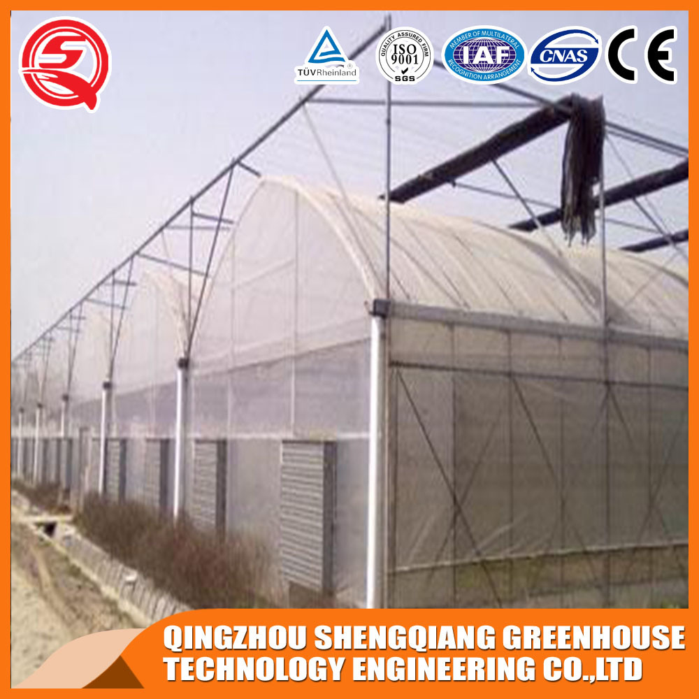Agriculture Multi Span Indoor Growing Tent Plastic Film Green House