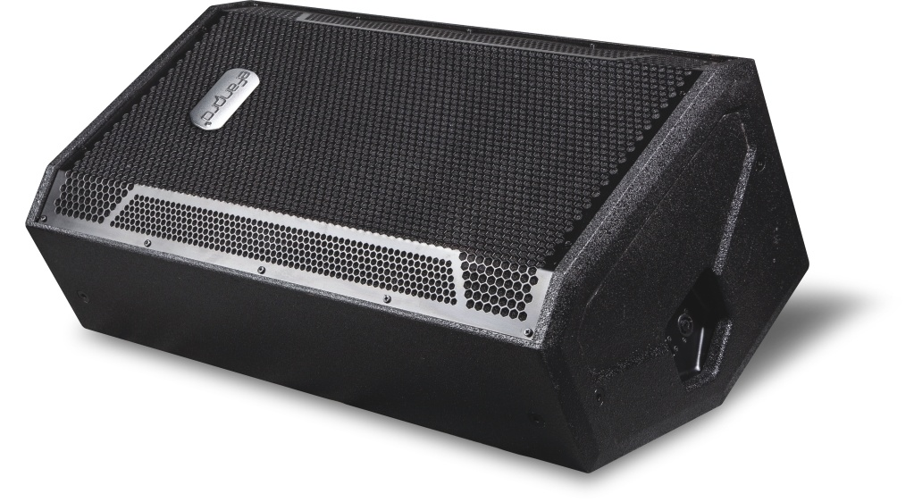 Single 12 Inch Monitor Professional Speaker Box for Show (STX-812)