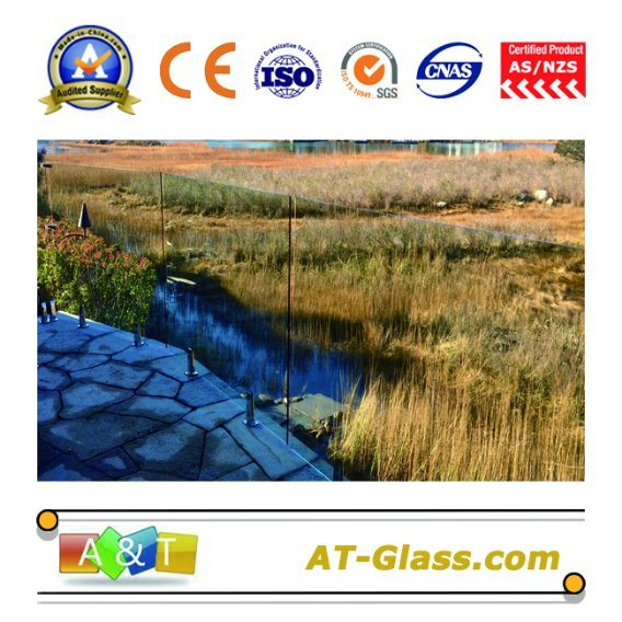 8mm 10mm 12mm Tempered Glass/Toughened Used for Frameless Glass Fencing/Glass Safety Fencing