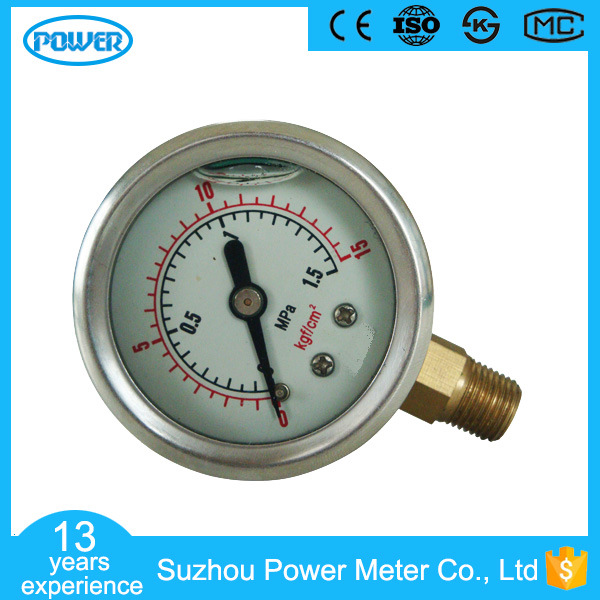 Stainless Steel Case Brass Connection Pressure Gauge with Bottom Mounting