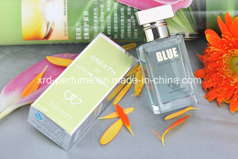 Customized Various Color Design Different Scent Fragrance