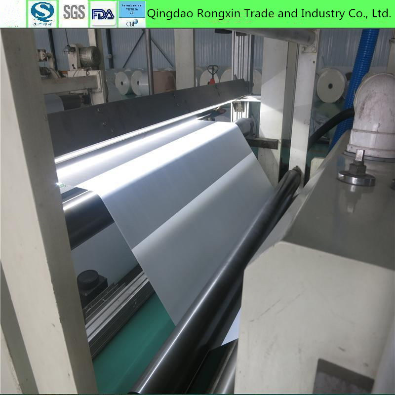 Food Grade Double Side PE Coated Paper in Roll or in Sheet