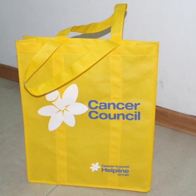 Non-Woven Bag (HR-NWB111)