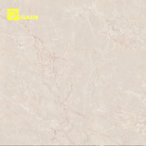Full Polished Granite Porcellanato Tile by Foshan Factory (PG6101)