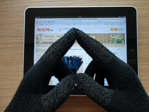 Silver Touch Screen Glove Annor