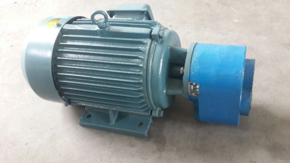 Electrical Unit CB-B100 Gear Pump Motor