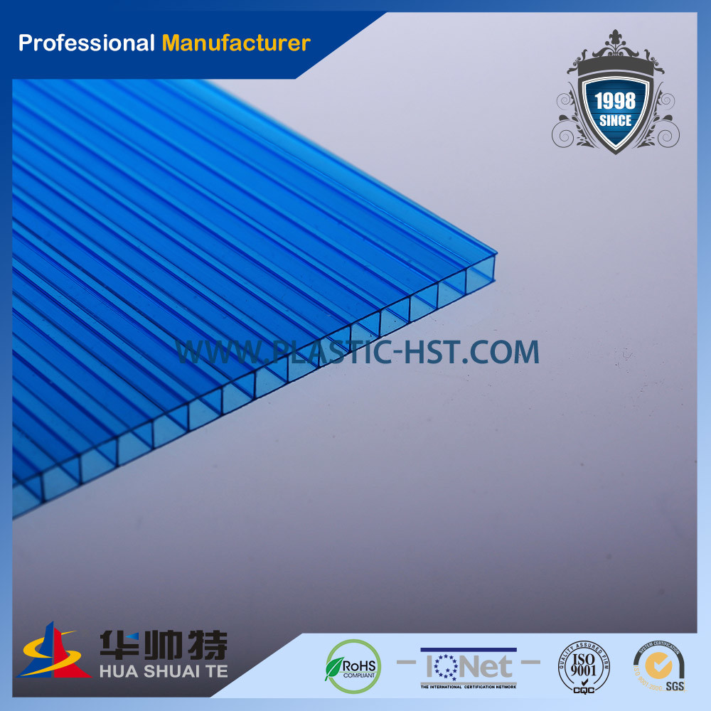 Transparent Lexan PC Twin-Wall Sheet