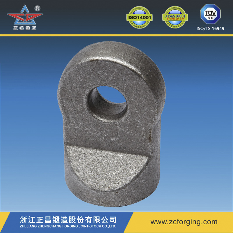 Forged Door Hinge for Auto, Motorcycle Parts