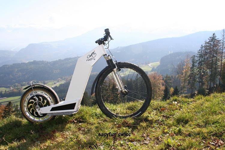 Golden Motor Magic Pie Series Ebike Conversion Part 1000W