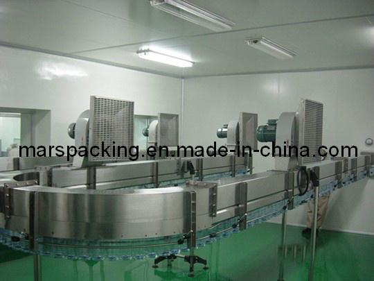 Pet Bottles Air Blower Conveyor (FS-1)