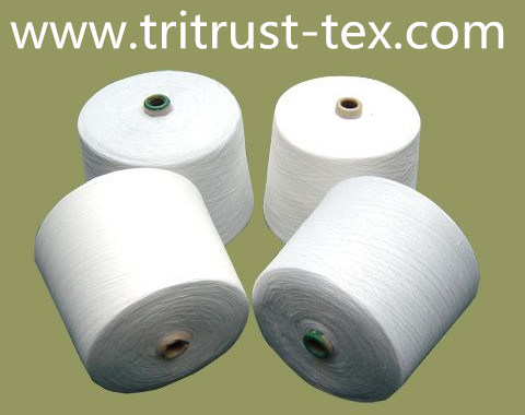 100% Polyester-Sewing Yarn (2/40s)