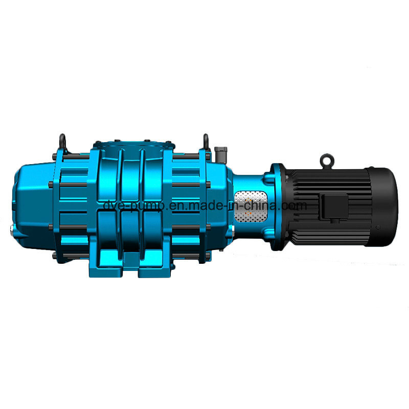 Roots Type Blower for Food Vacuum Evacuation Processing