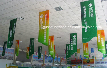 High Quality Posters, Photo Paper Printing (tx001)