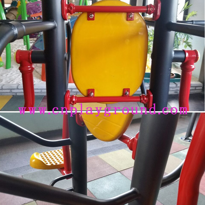 Outdoor Fitness Equipment for Body Building Double Swaying Board (HA-12302)