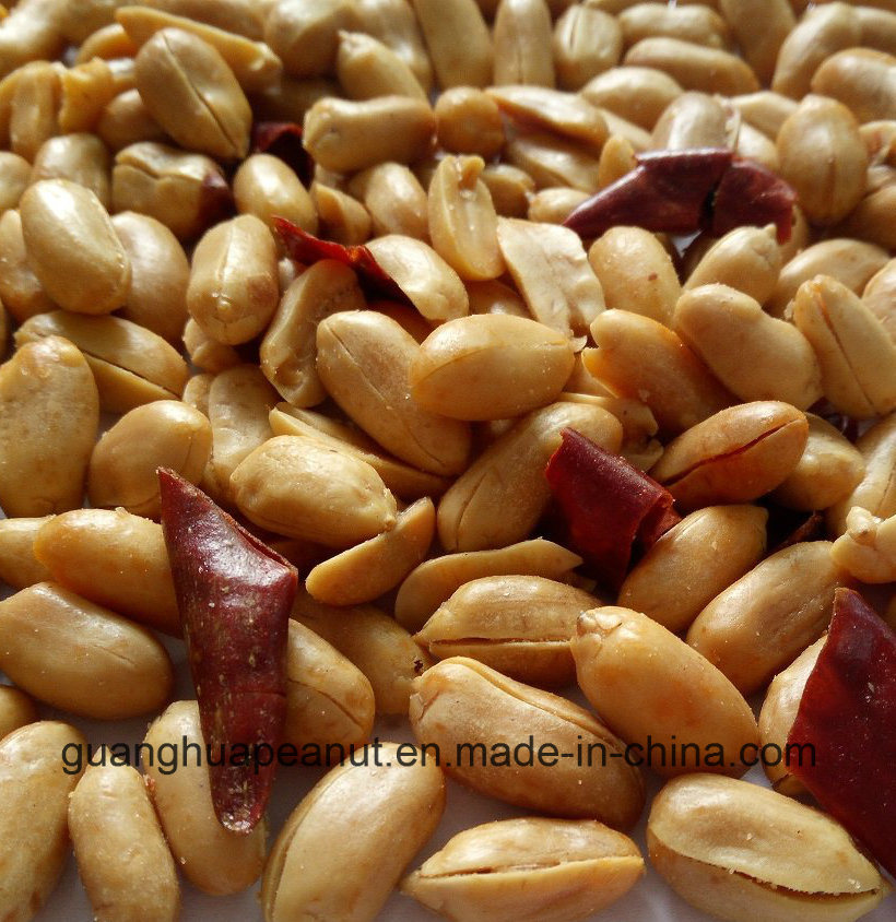 New Crop Roasted Chili Peanut Kernels