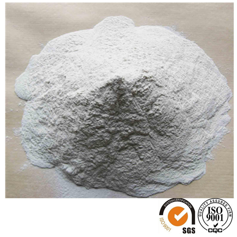 Hydroxypropyl Methylcellulose HPMC