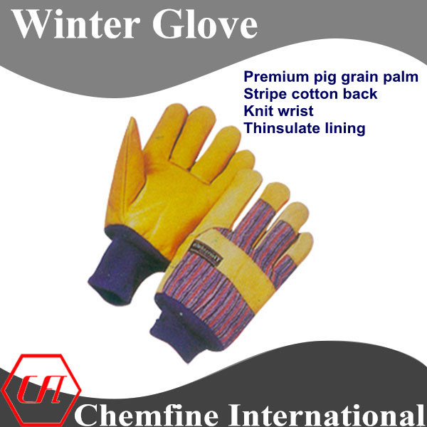 Premium Pig Grain Palm, Stripe Cotton Back, Knit Wrist, Thinsulate Lining Leather Winter Glove